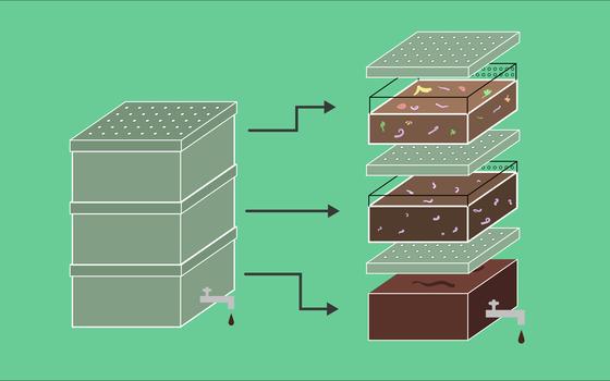 Como fazer uma composteira em casa e reaproveitar seu 'lixo'