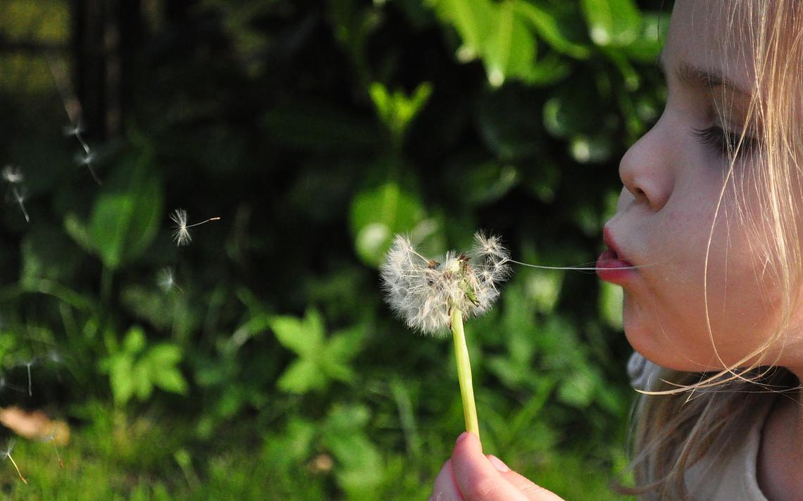 Segundo o relatório da Associação Brasileira de Alergia e Imunologia (Asbai), cerca de 30% da população mundial sofre algum tipo de alergia. Crianças representam 20% desse número - que só aumenta.