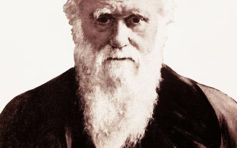 O que você sabe sobre Charles Darwin? Faça o teste
