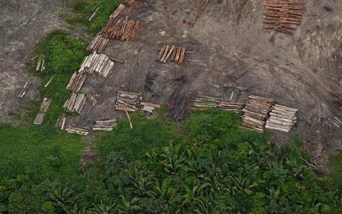Quais são as contestações ao 'Projeto de Lei da Grilagem'