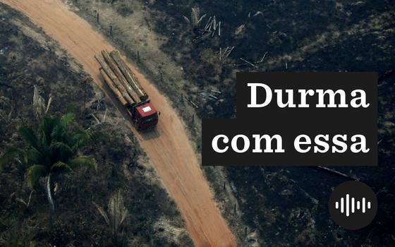 A carta de investidores contra o desmatamento no Brasil