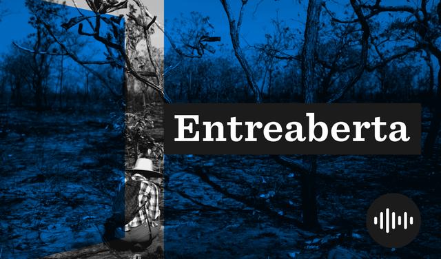 Imagem em preto e branco de uma mulher agachada no meio de uma floresta queimada.  Em primeiro plano, uma faixa azul que remete a uma porta se entreabrindo. Logo diz: Entreaberta