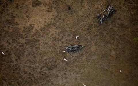 Mais desmatamento, menos chuva e menor produção agrícola