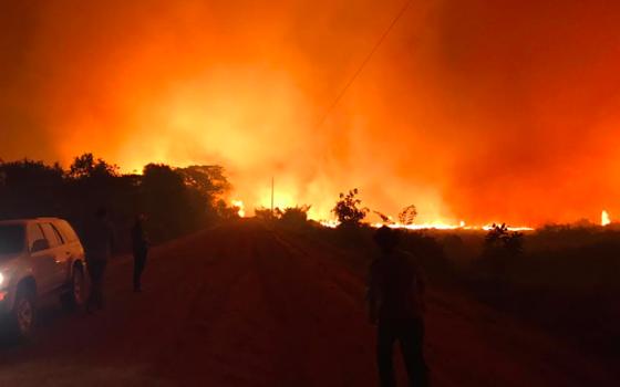 Como o poder público responde aos incêndios no Pantanal
