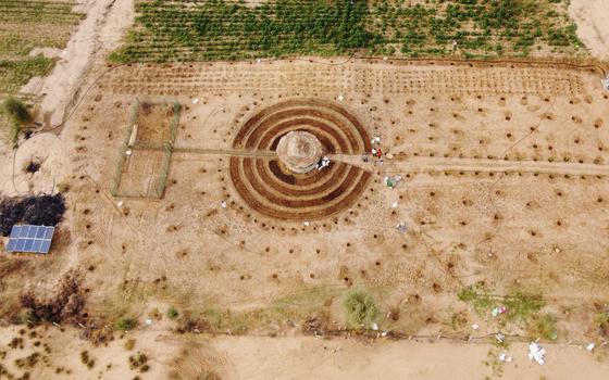 Os jardins circulares que senegaleses estão criando no deserto