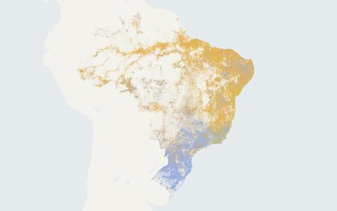 O que o mapa racial do Brasil revela sobre a segregação no país