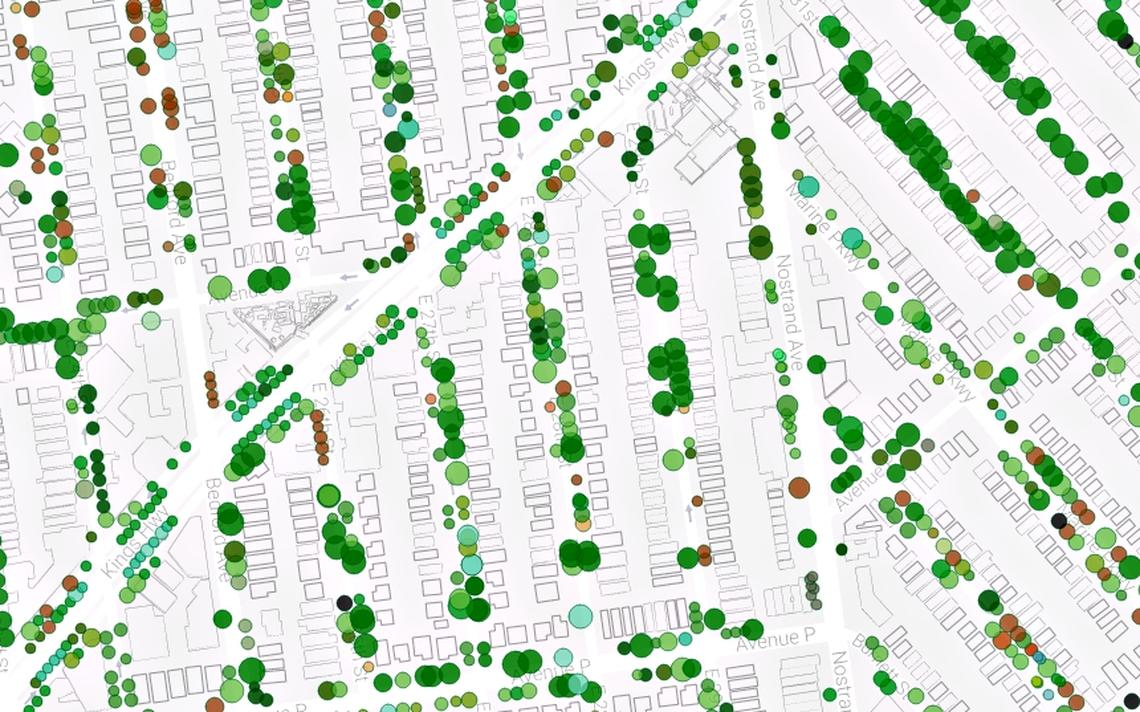 Mapa das árvores de Nova York