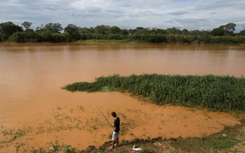 Relatos de pesquisadores ilustram consequências do desastre de Mariana