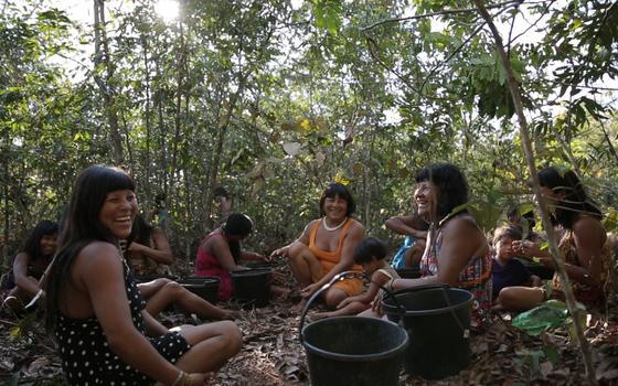 O movimento de mulheres indígenas para reflorestar o Xingu