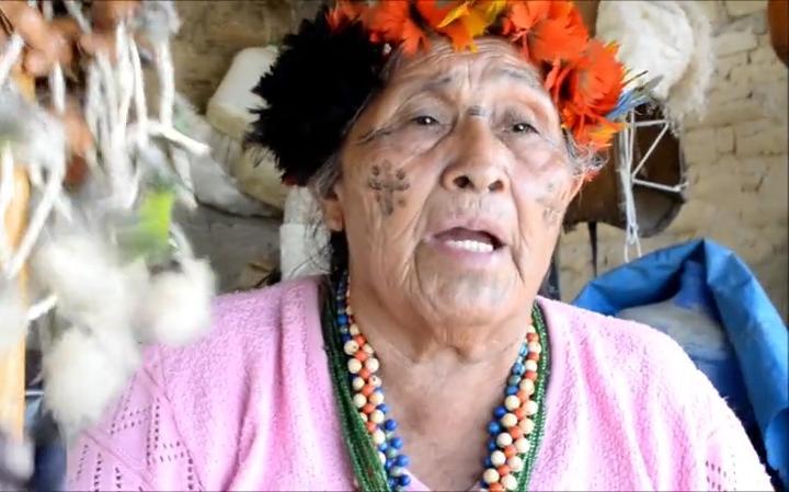 O e-book gratuito que reúne narrativas orais de indígenas