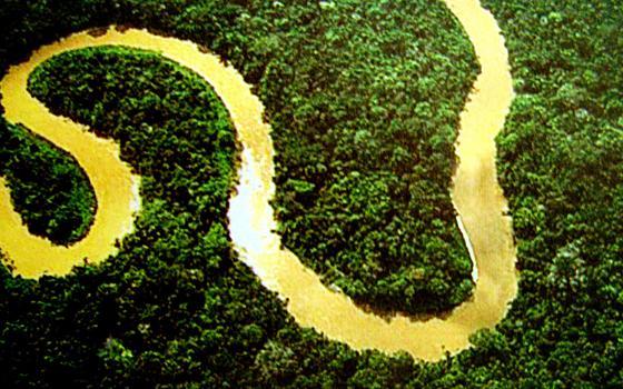 O que você sabe sobre os biomas do Brasil? Faça o teste