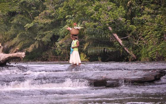 Duas etnias, o mesmo problema: a questão indígena no sul da Bahia
