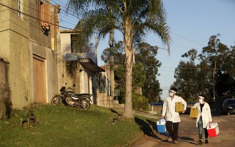 Covid: os resultados e o futuro do estudo por amostragem no Brasil